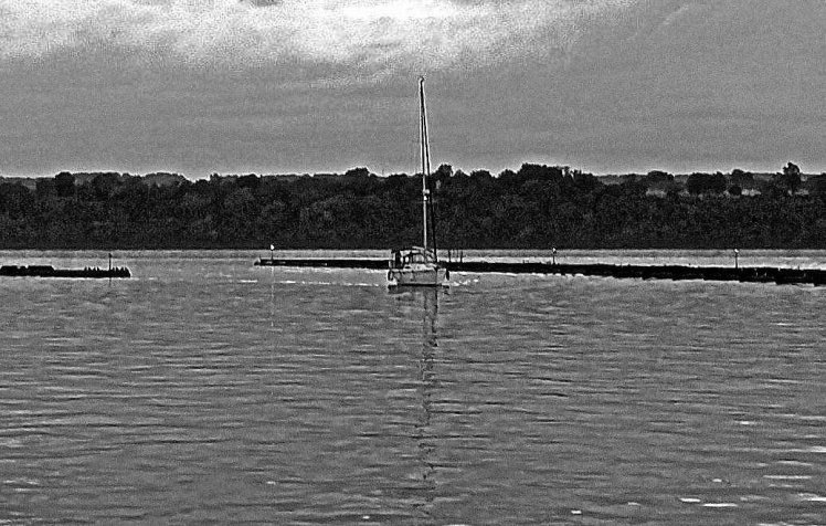 sailboat b and w